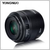 Creating A Beautiful Soft Blurred Background  --YONGNUO Standard Prime Lens YN50mm F1.4